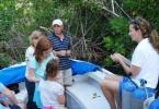 mangrove_field_trip_1
